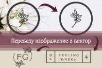Перерисую растровое изображение в векторное 33 - kwork.ru