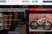 Создам лендинг на вордпресс быстро 54 - kwork.ru