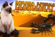 Превью картинка для YouTube 116 - kwork.ru