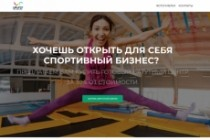 Создание одностраничника на Wordpress 377 - kwork.ru