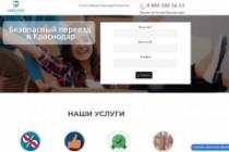 Создание одностраничника на Wordpress 376 - kwork.ru