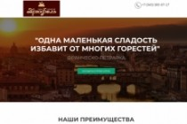 Создание одностраничника на Wordpress 355 - kwork.ru