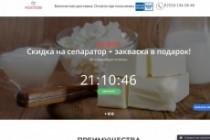 Создание одностраничника на Wordpress 352 - kwork.ru