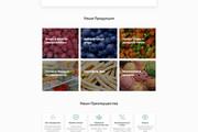 Создание сайта на WordPress 80 - kwork.ru