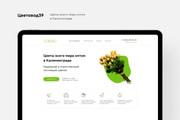 Создание Landing Page, одностраничный сайт под ключ на Tilda 55 - kwork.ru