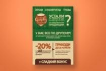 Разработаю дизайн флаера, акционного предложения 103 - kwork.ru