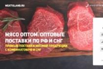 Продающий landing page под ключ с продвижением 12 - kwork.ru