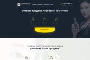 Продающий сайт - Лендинг под ключ, для любых целей 132 - kwork.ru