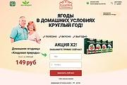 Скопировать лендинг 22 - kwork.ru