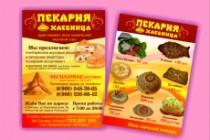 Создам качественный дизайн привлекающей листовки, флаера 102 - kwork.ru