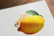 Сделаю логотип в трех вариантах 126 - kwork.ru