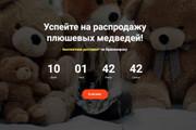 Скопировать Landing page, одностраничный сайт, посадочную страницу 119 - kwork.ru