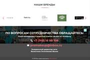 Landing Page с 0 + дизайн 175 - kwork.ru