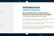 Дизайн продающего лендинга для компании 55 - kwork.ru