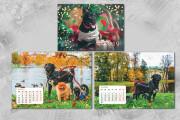 Дизайн - макет любой сложности для полиграфии. Вёрстка 117 - kwork.ru
