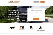 Копия сайта, landing page + админка и настройка форм на почту 203 - kwork.ru