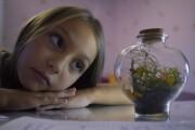 Портфолио MuzVideo2_ru