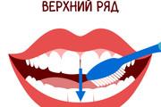 Векторная иллюстрация 147 - kwork.ru