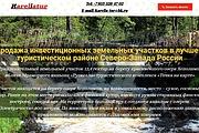 Создам лендинг на вордпресс быстро 57 - kwork.ru