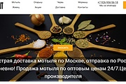 Создам лендинг на вордпресс быстро 61 - kwork.ru