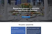 Дизайн страницы Landing Page - Профессионально 141 - kwork.ru