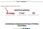 Лендинг для любых целей на Wordpress 144 - kwork.ru