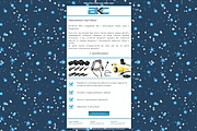 Разработаю шаблон письма для email рассылки 32 - kwork.ru