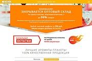 Скопирую Landing Page, Одностраничный сайт 198 - kwork.ru