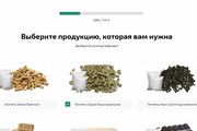 Landing Page с 0 + дизайн 187 - kwork.ru