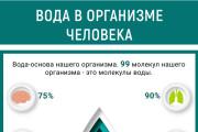 Инфографика для сайта 28 - kwork.ru