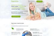Дизайн Landing Page 14 - kwork.ru