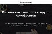 Создам лендинг на платформе Тильда 17 - kwork.ru