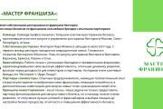 Стильный дизайн презентации 683 - kwork.ru