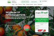 Скопирую Landing Page, Одностраничный сайт 185 - kwork.ru