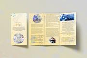 Разработаю макет Брошюры, буклета 9 - kwork.ru