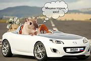 Изменение фона на фото 62 - kwork.ru
