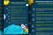 Нарисую инфографику 66 - kwork.ru