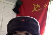 Запишу для вас аудиоролик 3 - kwork.ru