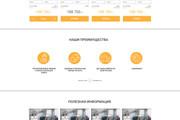 Уникальный дизайн сайта для вас. Интернет магазины и другие сайты 230 - kwork.ru
