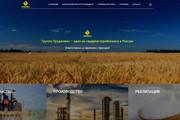 Скопирую почти любой сайт, landing page под ключ с админ панелью 81 - kwork.ru