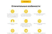 Копирование Landing Page 98 - kwork.ru