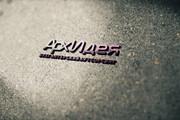 Разработаю дизайн логотипа 224 - kwork.ru
