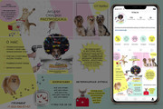 Оформление инстаграм. Дизайн 15 шаблонов постов и 3 сторис 26 - kwork.ru