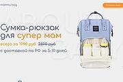 Скопирую Landing Page, Одностраничный сайт 209 - kwork.ru