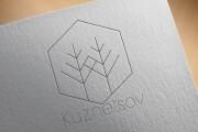 Создам уникальный логотип 11 - kwork.ru