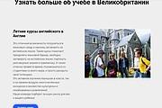 Создание сайта - Landing Page на Тильде 247 - kwork.ru