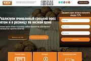 Создам лендинг на вордпресс быстро 52 - kwork.ru