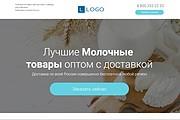 Скопирую Landing Page, Одностраничный сайт 163 - kwork.ru