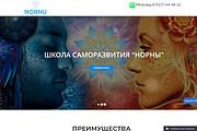 Создание одностраничника на Wordpress 341 - kwork.ru