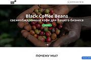 Создание одностраничника на Wordpress 332 - kwork.ru